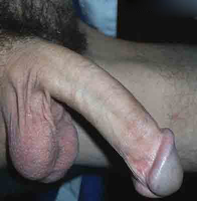 Long Cock Big Head - big head - Amateur Gay Porn Pictures And Stories